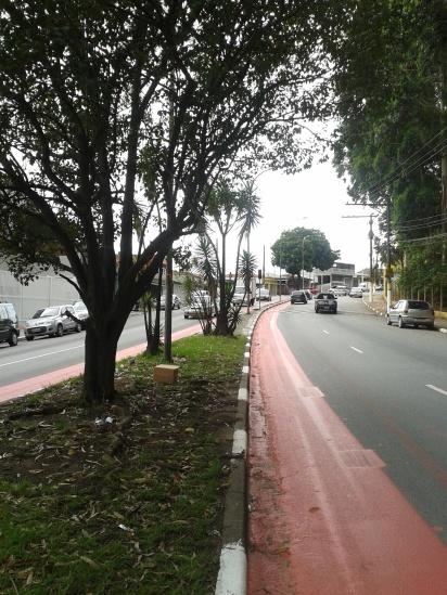 Ciclovia em implantação na Av. Lourenço Cabreira, bairro com grande uso da bicicleta como transporte, devido a ser uma rota natural dos ciclistas que seguem em direção à Ciclovia Rio Pinheiros.